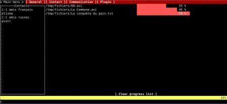 primitivus_copie_fichier.png